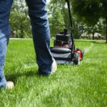 What's the Best Lawnmower for Your Lawn?